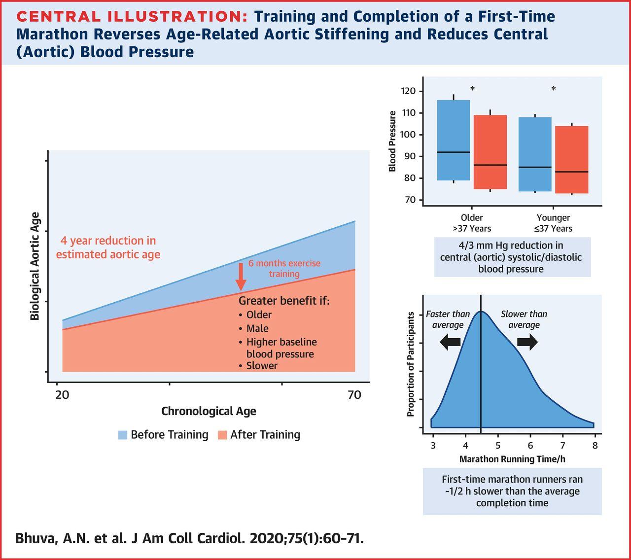 immagine dello studio su maratona e irrigidimento aortico